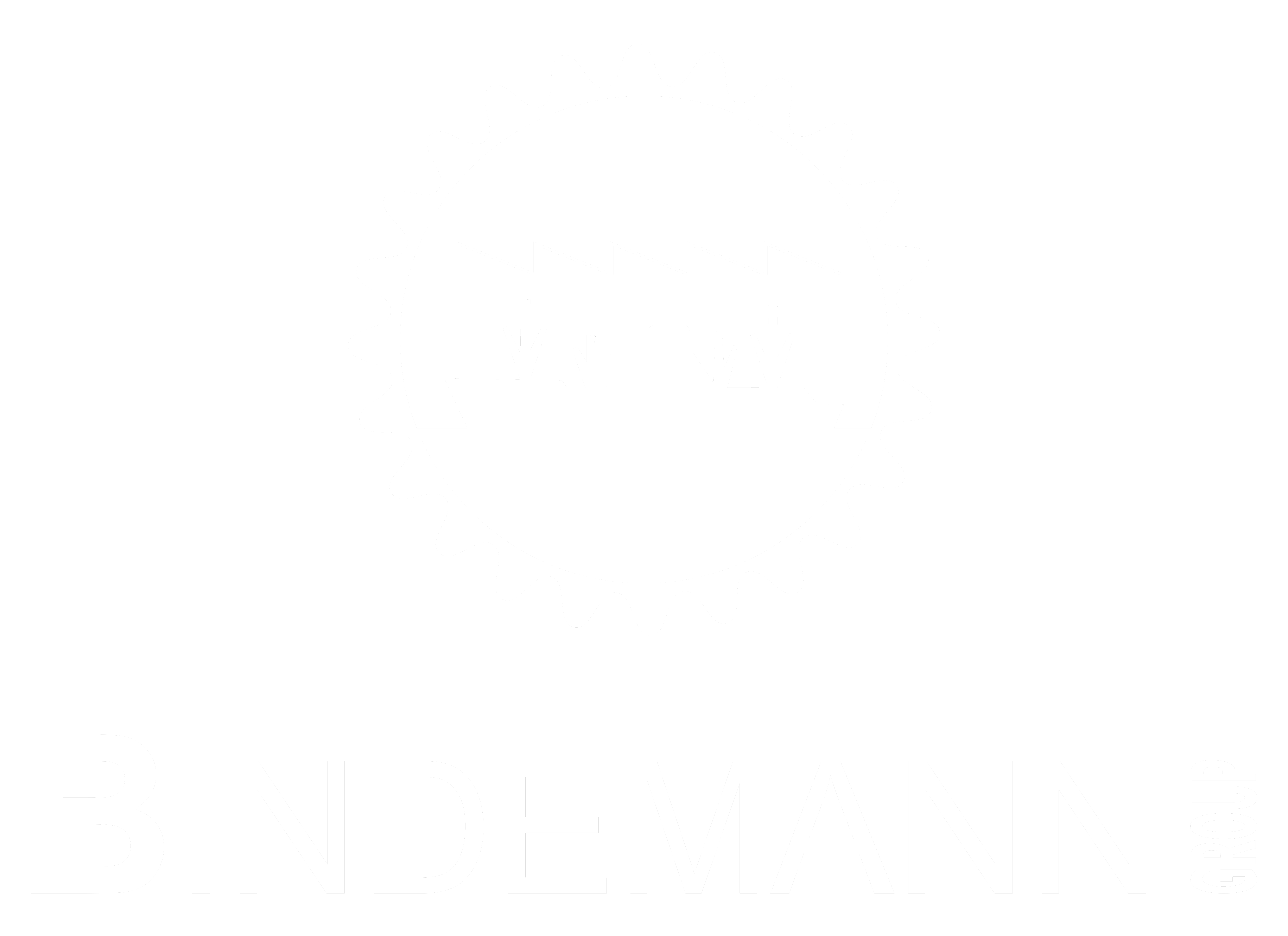 Bindemann Group